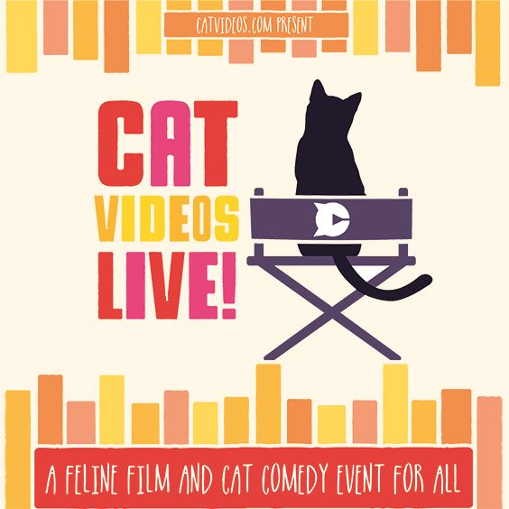 cat-videos-live-tickets_10-26-17_18_5976208835dcc.jpg